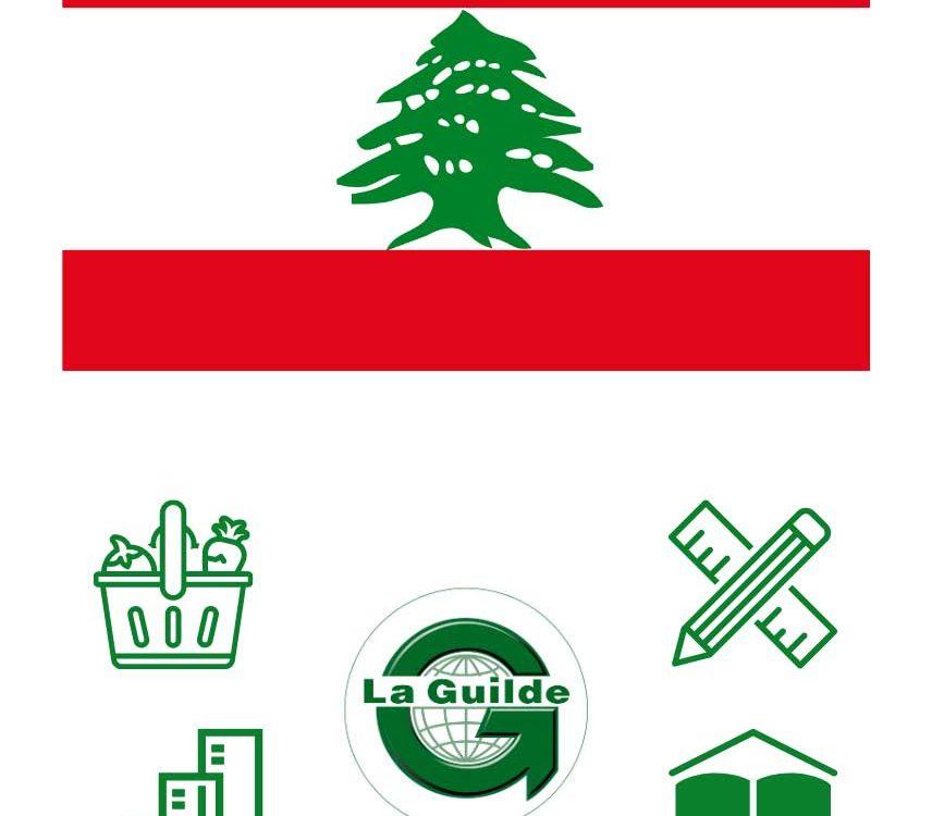 Appel à projets Liban 2021